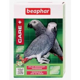 Care + Perroquets Gris du Gabon 1 kg - Dogteur