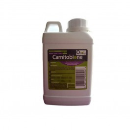 Carnitobione 500 ml - Dogteur