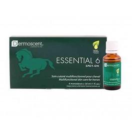 Dermoscent Essential 6 Cheval 4x30 ml - Dogteur