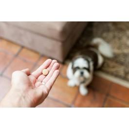 Drontal P XL vermifuge chien gout viande 2 Cps - Dogteur