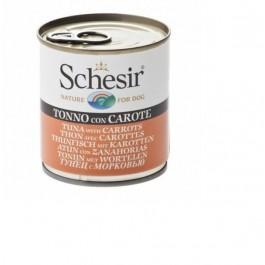Schesir Thon avec carottes en gelée pour chien 16 x 285 g - Dogteur
