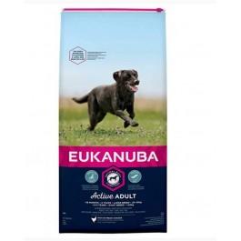 Eukanuba Chien Active Adult Grande Race au poulet 15 kg - Dogteur
