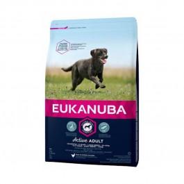Eukanuba Chien Active Adult Grande Race au poulet 3 kg - Dogteur