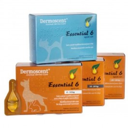 Dermoscent Essential 6 Chien de 20 à 40kg - 4 pipettes - Dogteur