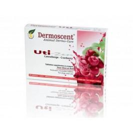 Dermoscent Uti Zen 30 tablettes - Dogteur