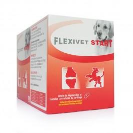Flexivet Start 40 cps - Dogteur