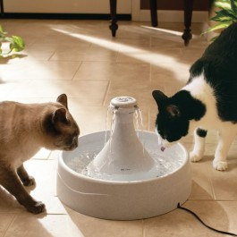 Fontaine Drinkwell 360° - Dogteur