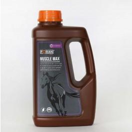 Foran Muscle Max Développe les Muscles du cheval et poulain 1 L - Dogteur