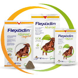 Flexadin Advanced 60 bouchées - Dogteur