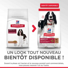 Hill's Science Plan Canine Adult Medium Advanced Fitness agneau 12 kg - Dogteur