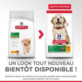 Offre -10 % Hill's Science Plan Puppy Large Healthy Development Poulet 16 kg - Dogteur
