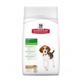 Hill's Science Plan Puppy Medium Healthy Development agneau et riz 12 kg - Dogteur