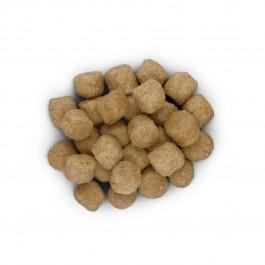 Hill's Prescription Diet Canine D/D Canard et Riz 5 kg - Dogteur