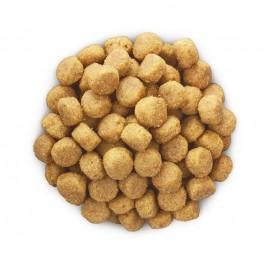 Hill's Prescription Diet Canine H/D 5 kg - Dogteur