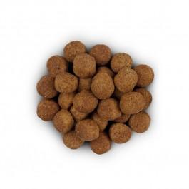 Hill's Prescription Diet Canine J/D Reduced Calorie 12 kg - Dogteur