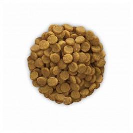 Hill's Prescription Diet Feline K/D 5 kg - Dogteur
