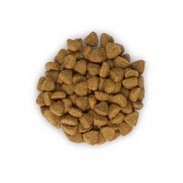 Hill's Science Plan Kitten Healthy Development Poulet 2 kg - Dogteur