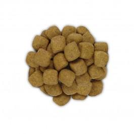 Hill's Prescription Diet Feline T/D 5 kg - Dogteur