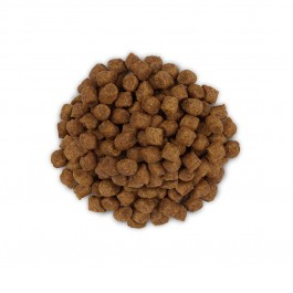 Hill's Prescription Diet Feline J/D 2 kg - Dogteur