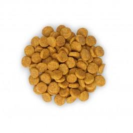 Hill's Science Plan Feline Mature Adult Active Longevity Poulet 2 kg - Dogteur
