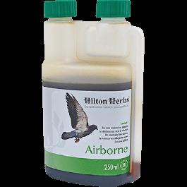 Hilton Herbs Airborne 250 ml - Dogteur