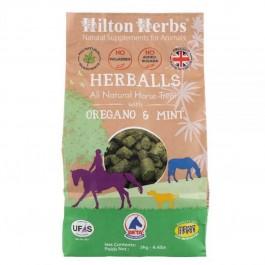 Hilton Herbs Herballs Friandises Naturelles Cheval 2 kg - Dogteur