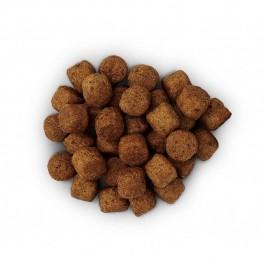 Hill's Prescription Diet Canine J/D 5 kg - Dogteur