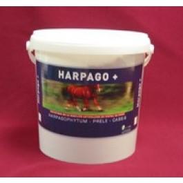 Greenpex Harpago+ 4.5 kg - Dogteur