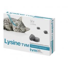 Lysine TVM - Dogteur