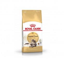 Royal Canin Maine Coon Adult 31 2 kg - Dogteur