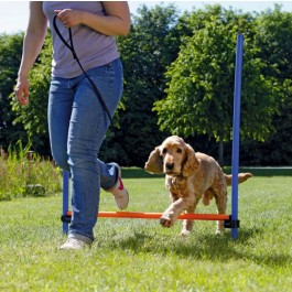 Trixie Obstacle Agility - Dogteur