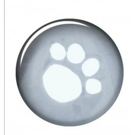 Trixie Imperméable Tarbes pour chien XS - Dogteur