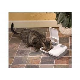 Pet Feeder Distributeur automatique 2 repas - Dogteur