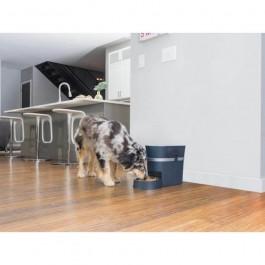 Pet Safe Distributeur de nourriture Digital 12 repas - Dogteur