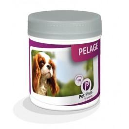 Pet Phos Pelage Chien 450 cps - Dogteur