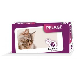 Pet Phos Pelage Chat 36 cps - Dogteur