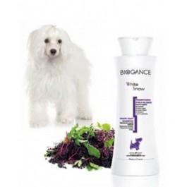 Biogance Shampooing Poils Blancs pour Chien, Chiot et Chat 250 ml - Dogteur