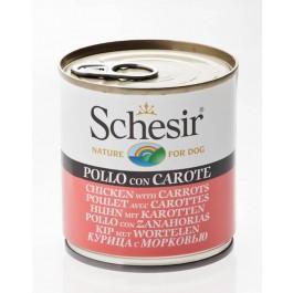 Schesir Poulet avec Carottes en gelée pour chien 16 x 285 g - Dogteur