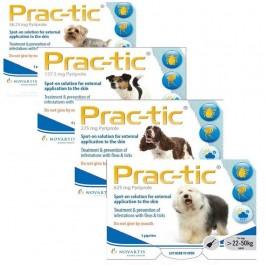 Prac-Tic Chiens Moyens 6 pipettes - Dogteur