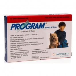 Program P pour chien de 2.5-7 kg 6 cps - Dogteur