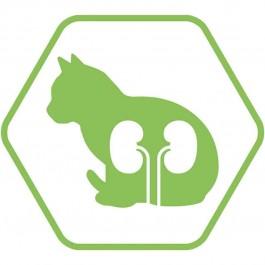 Purina Proplan Optirenal Adult Cat Sterilised Saumon 3 kg - Dogteur