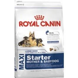 Royal Canin Maxi Starter Mother and Babydog 15 kg - Dogteur