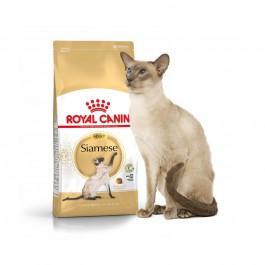 Royal Canin Siamois Adult 38 2 kg - Dogteur