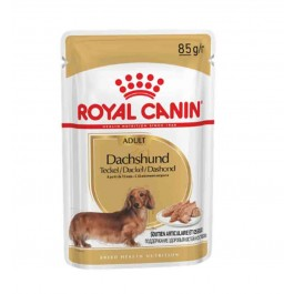 Royal Canin Teckel Adult 1.5 kg - Dogteur