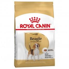 Royal Canin Beagle Adult 12 kg - Dogteur