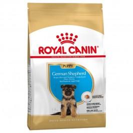 Royal Canin Berger Allemand Junior 12 kg - Dogteur