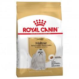 Royal Canin Bichon Maltais Adult 1.5 kg - Dogteur