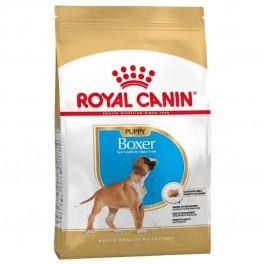 Royal Canin Boxer Junior 12 kg - Dogteur
