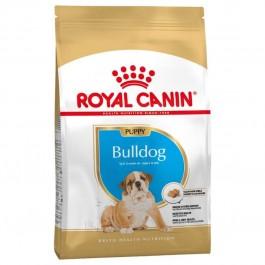 Royal Canin Bulldog Junior 3 kg - Dogteur