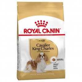 Royal Canin Cavalier King Charles Adult 3 kg - Dogteur